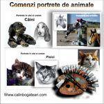 comenzi portrete de animale în ulei și creion