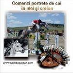 Portrete cai pictură în ulei pe pânză și desene cu cai la comandă