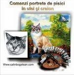 Portrete pisici pictură în ulei pe pânză și desene pisici la comandă
