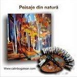 Peisaje din natură pictură în ulei pe pânză