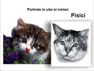 Portrete de pisici în creion şi ulei pe pânză la comandă