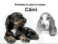 Portrete de câini în creion şi ulei pe pânză la comandă