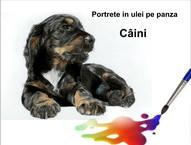 Portrete câini pictură în ulei