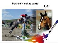 Portrete cai pictură în ulei pe pânză la comandă