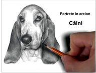 Portrete câini desene în creion grafică la comandă