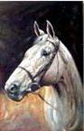 Imaginea 3. Portret de cal bust pictură în ulei pe fond scenic