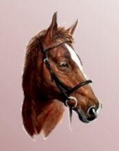 Imaginea 1 Portret de Cal bust pictat în ulei pe pânză pe un fond neutru