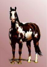 Imaginea 2Portret de cal în picioare pictură în ulei pe fond neutru