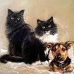 pictură pisici în ule pe pânză compoziție