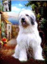 Portret de câine în picioare pictură în ulei pe fondal scenic
