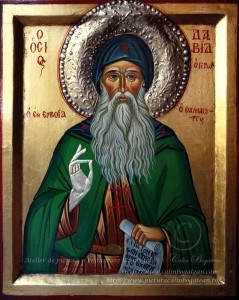 Sfântul David din Evia icoană pe lemn