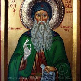 Sfântul David din Evia